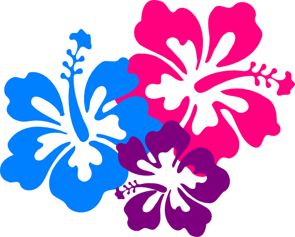 Hawaiian flower clip art bord - Hawaiian Flower Clipart