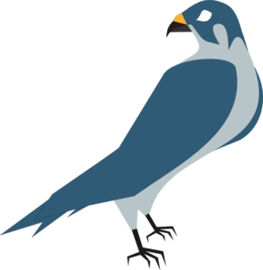 Hawk Clip Art At Clker Com Vector Clip Art Online Royalty Free