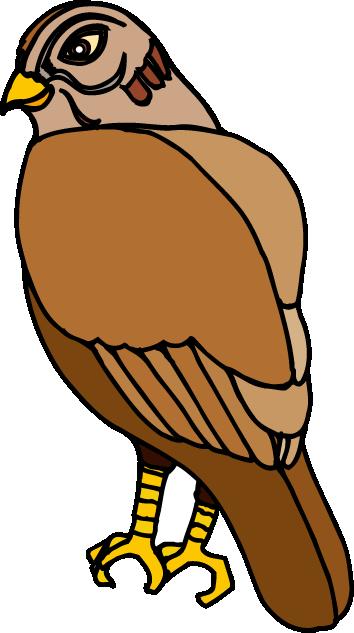 Hawk Clip Art Free