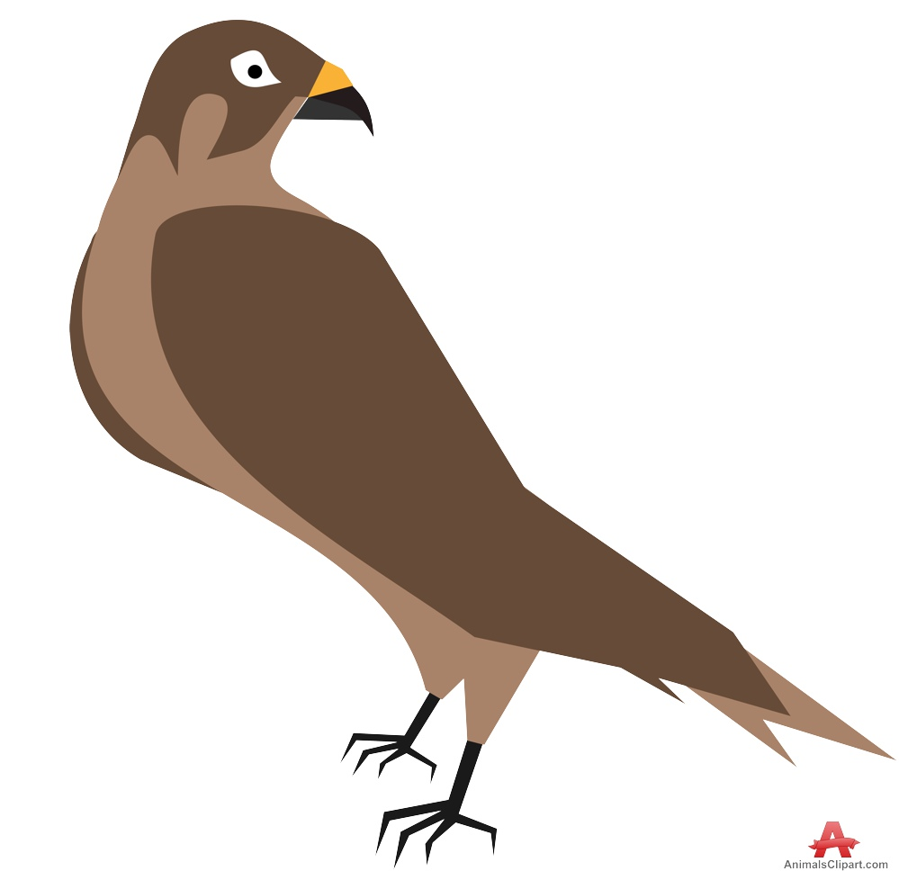 Hawk clipart design free clipart design download