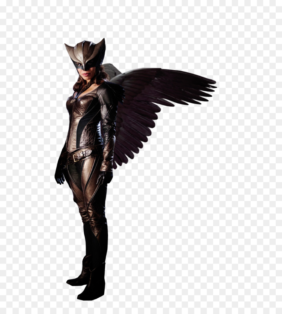 Hawkgirl Hawkman (Katar Hol) Hawkwoman Clip art - hawkgirl