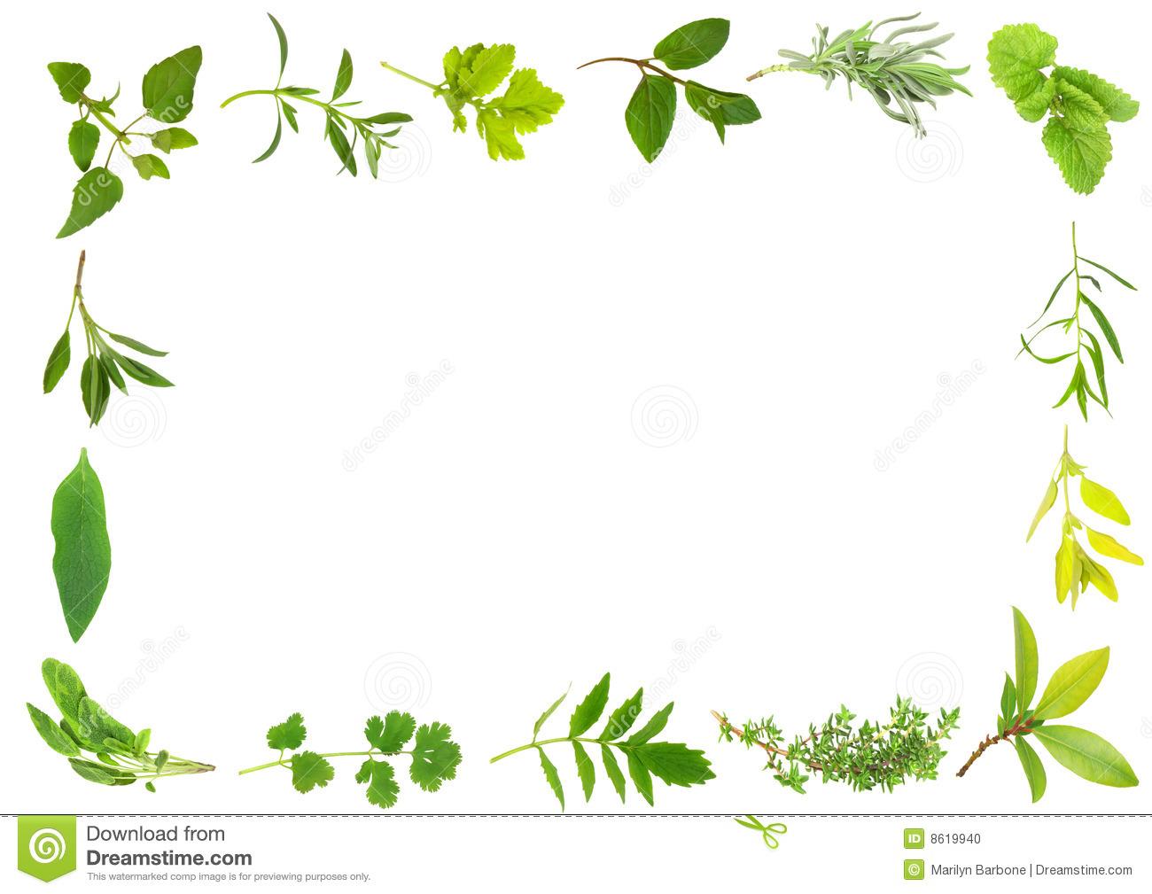 Clip Art Herbs Sign Clipart