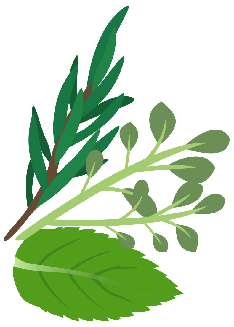Herbs Clipart