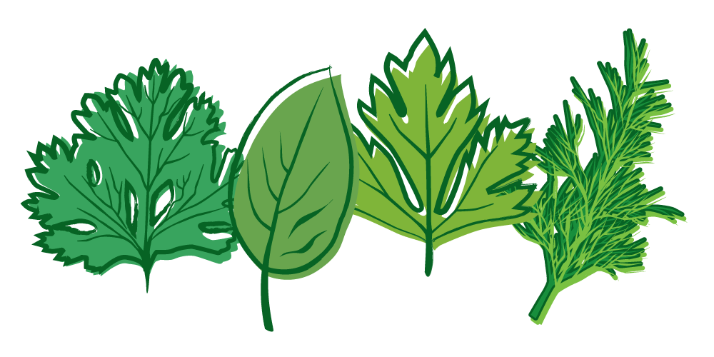 Herbs clipart transparent #1