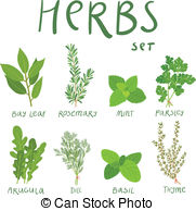 . hdclipartall.com Set of 8 vector herbs