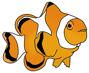 Here you find clown fish, scalare, different kinds of tropical and not tropical fish, all with beautiful colors.