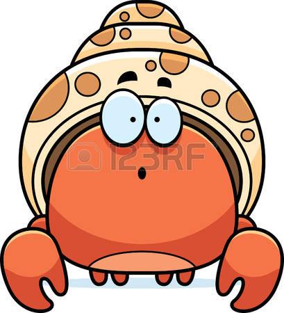 hermit crab: A cartoon illustration of a hermit crab looking surprised. Illustration