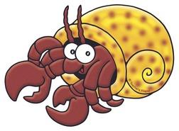 Hermit crab clipart - . Hermit Crab