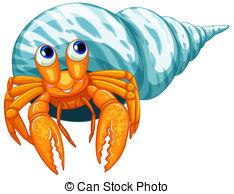 ... Hermit crab - Illustration of a closeup hermit crab
