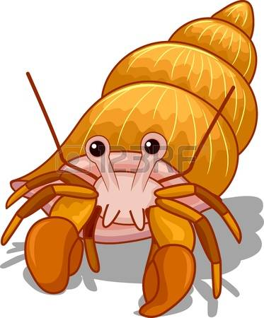 hermit crab: Illustration of a Golden Hermit Crab with its Head Exposed