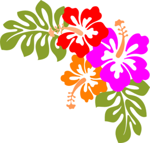 Hibiscus Border Clipart Best