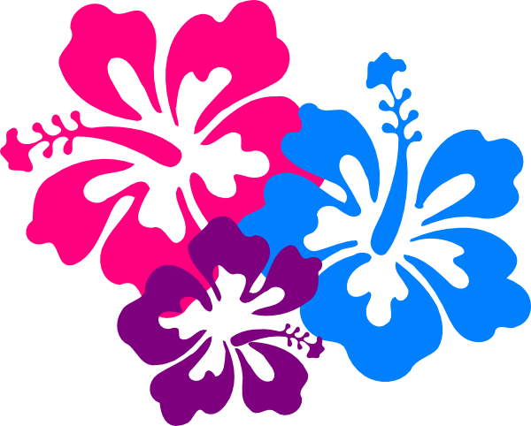 Hibiscus Border Png Clipart Best