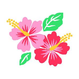 Hibiscus, Clip art and .