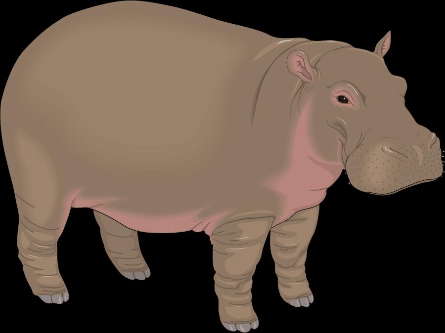 Hippopotamus Clipart 2