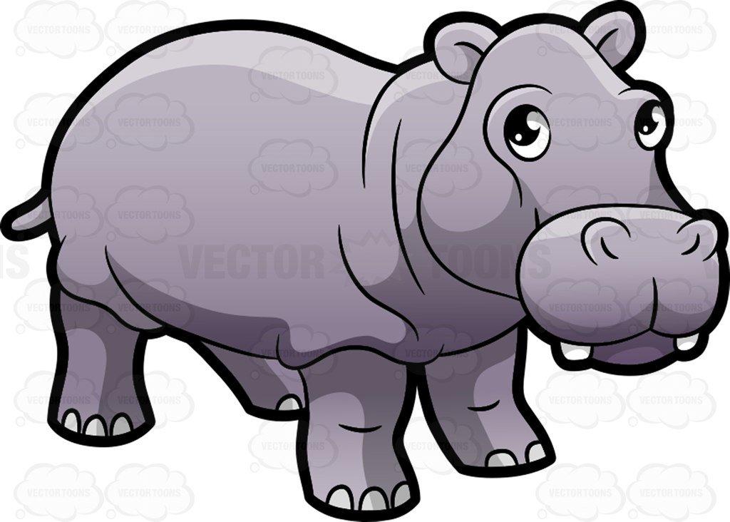 A cute hippopotamus at the zoo