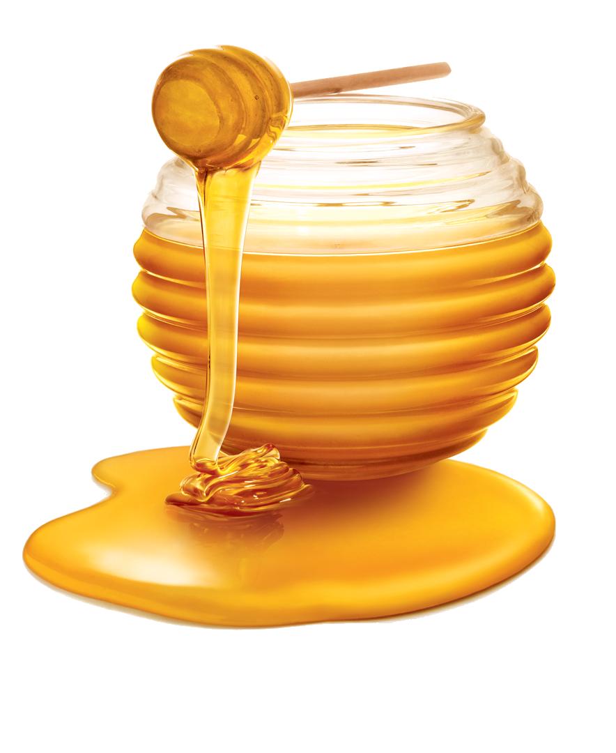 Honey PNG Photos - Honey Clipart