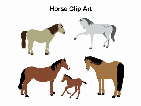 Horse Clipart-hdclipartall.co - Horse Clipart