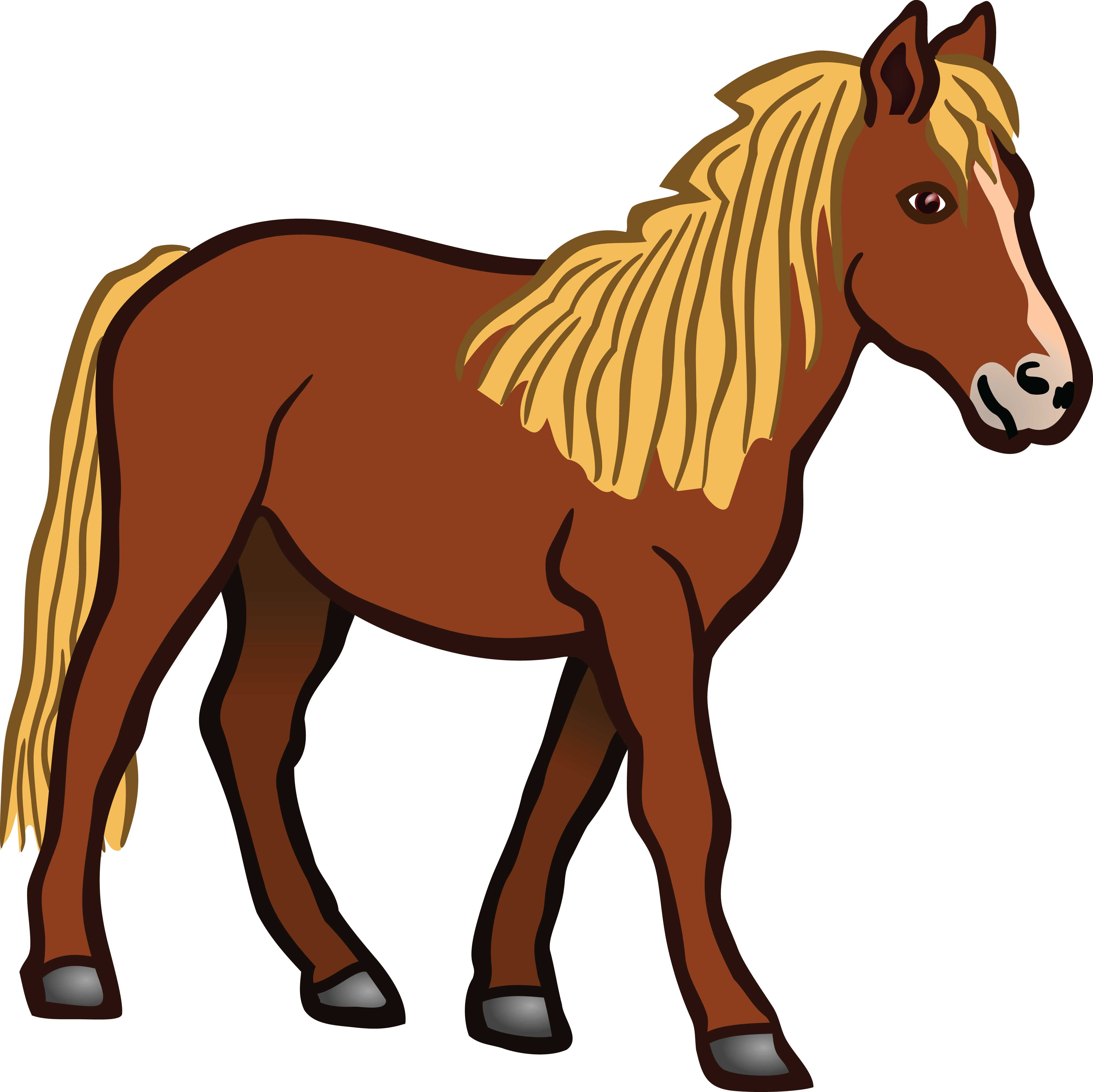 Free Clipart Of A Horse #00011495 .