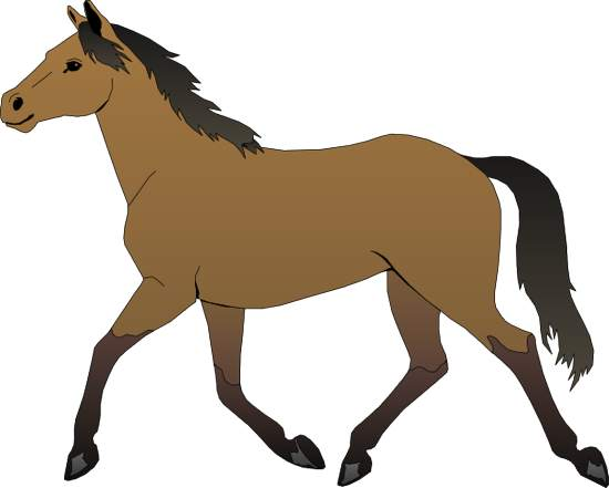 Horses Gallery Clipart #1