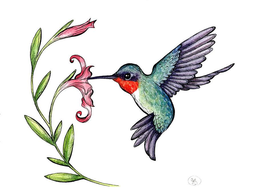 Ruby-throated Hummingbird Clipart #1