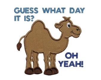 Hump Day Camel Machine Embroidery Digital Applique Design