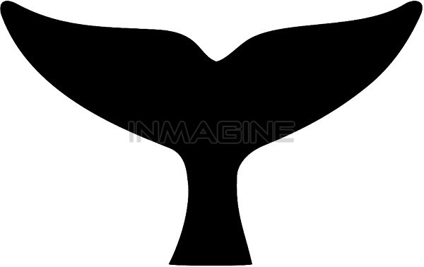Humpback Whale Tail Clipart