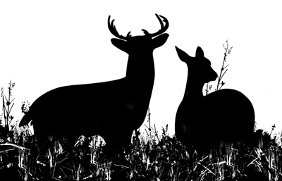 Hunting clipart - ClipartFest