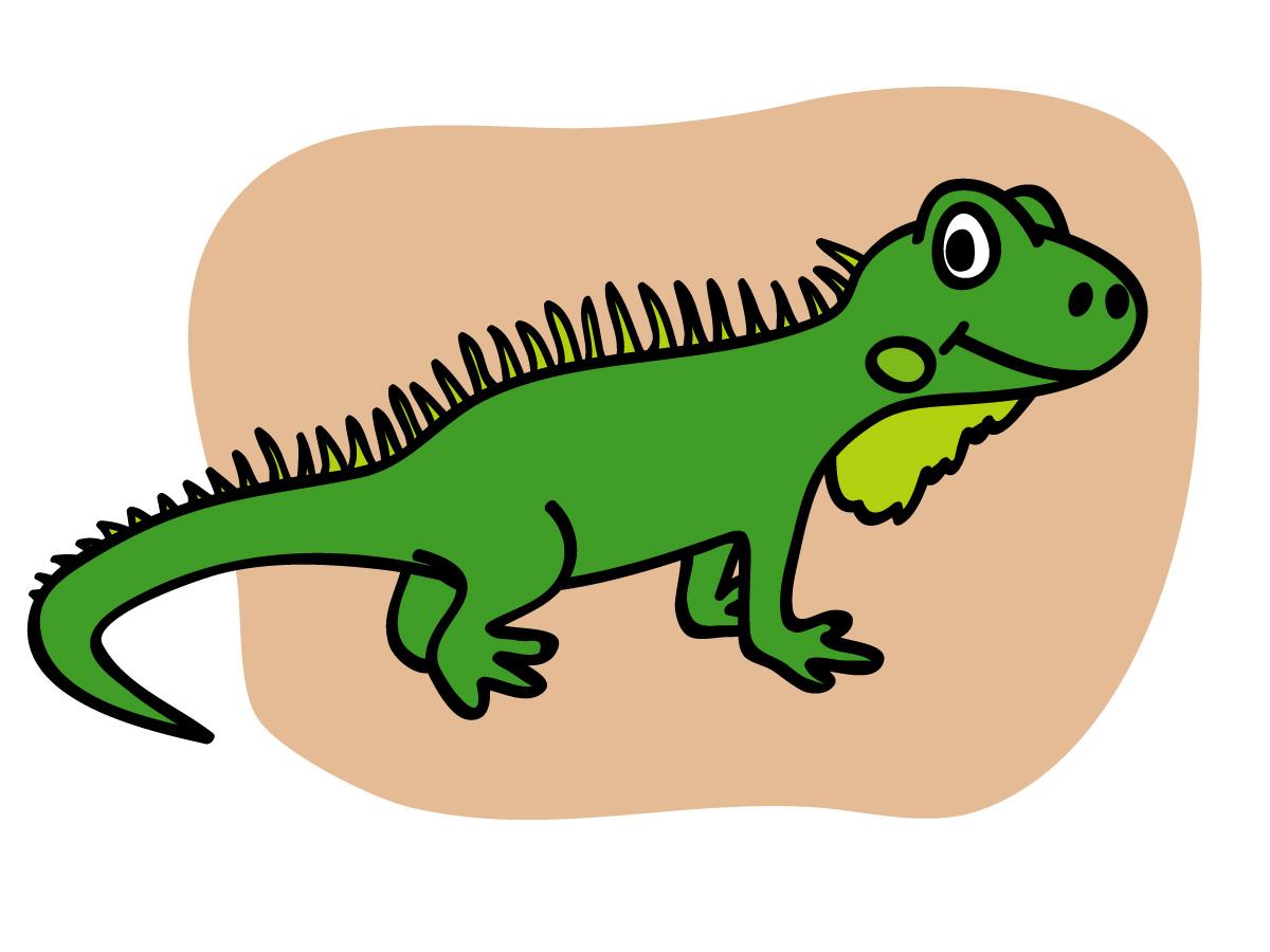 Clip art basic words iguana color labeled abcteach