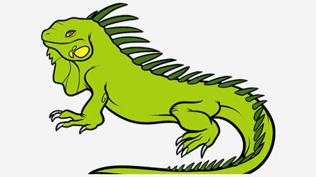 Green Iguana clipart animation #3