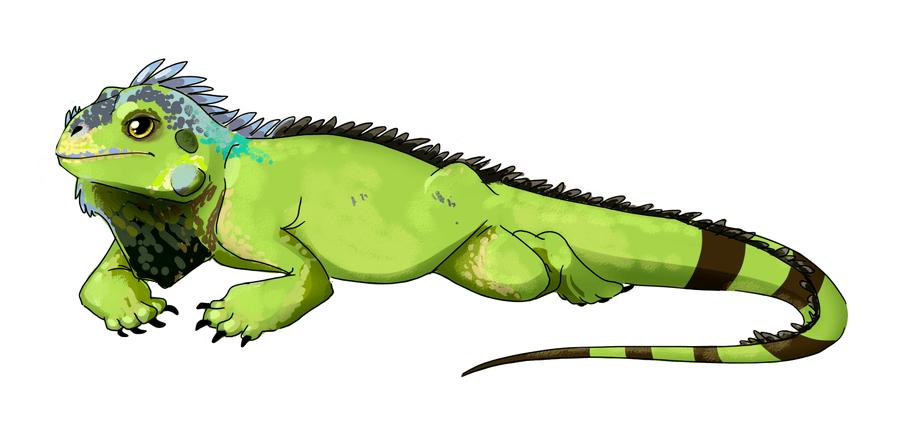Green iguana cliparts