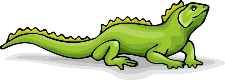iguana clipart iguana clipart cartoon free images 2 wikiclipart clip art  for students