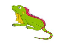 reptile lizard green iguana clipart. Size: 78 Kb