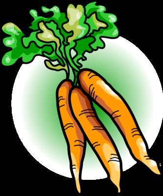 Image carrots food clip art
