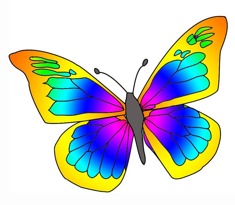 Images butterflies clipart clipartall