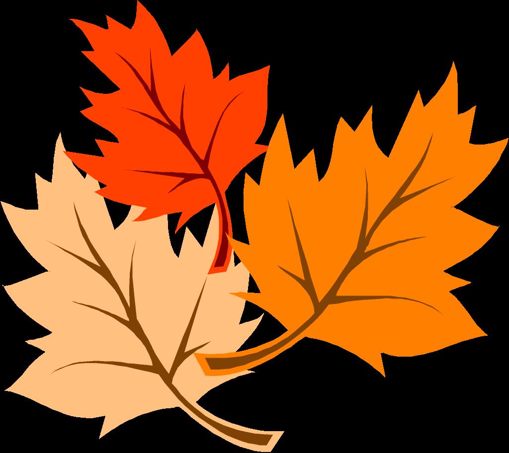 Images For u0026gt; Orange Leaves