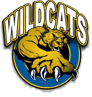 Images Of Wildcats Cheer .