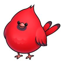 Imprimer Oiseaux On Pinterest Bluebirds Bird Art And Pretty Birds