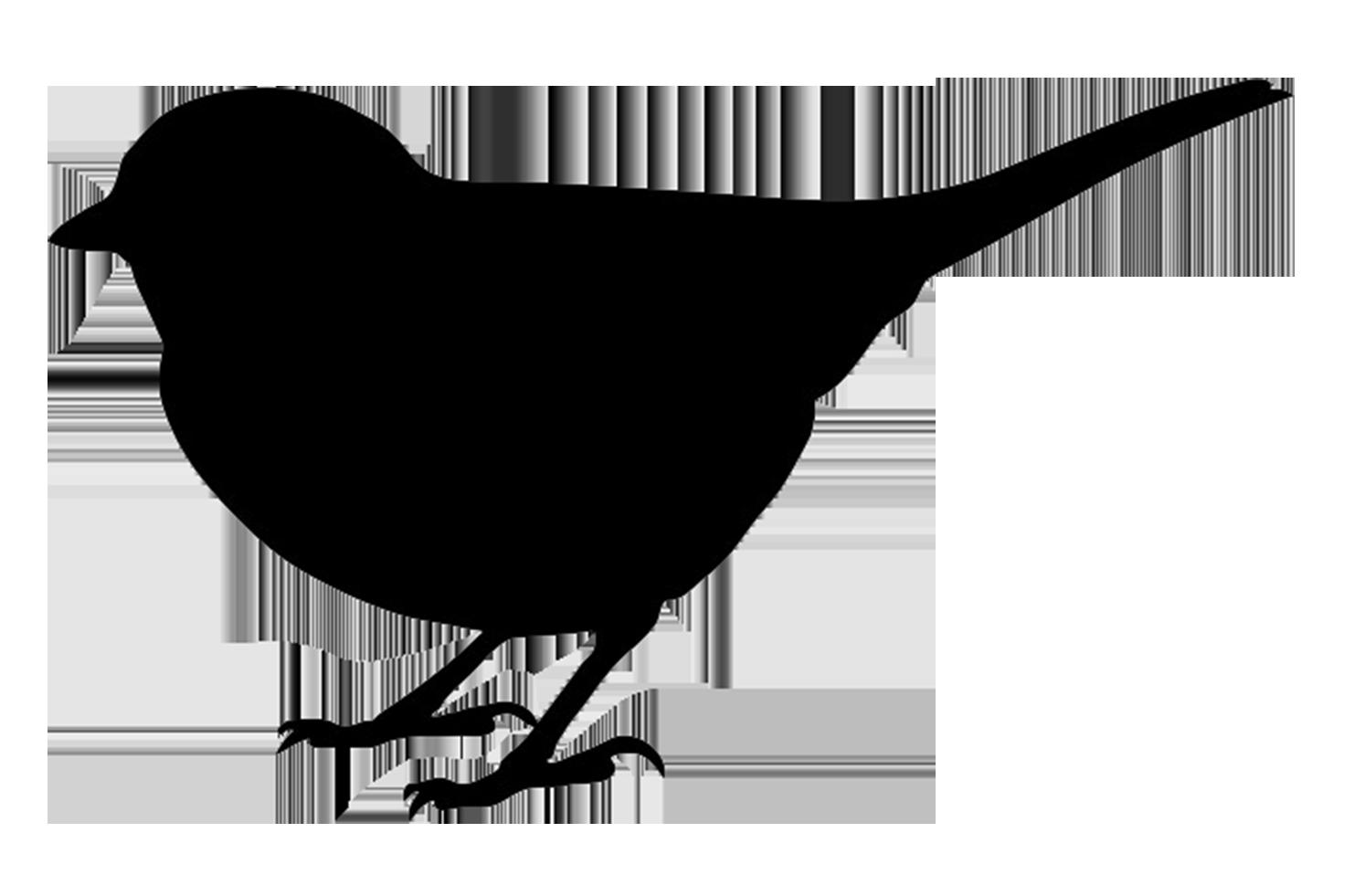 jackdaw silhouette, small bird black silhouette