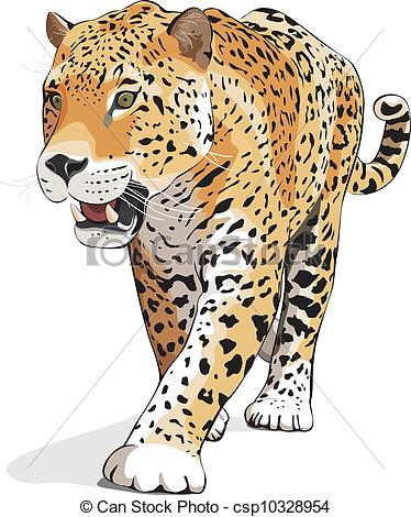 Jaguar - Vector, Isolated On White,