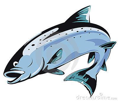 Jumping Salmon Clip Art Salmon Clipart