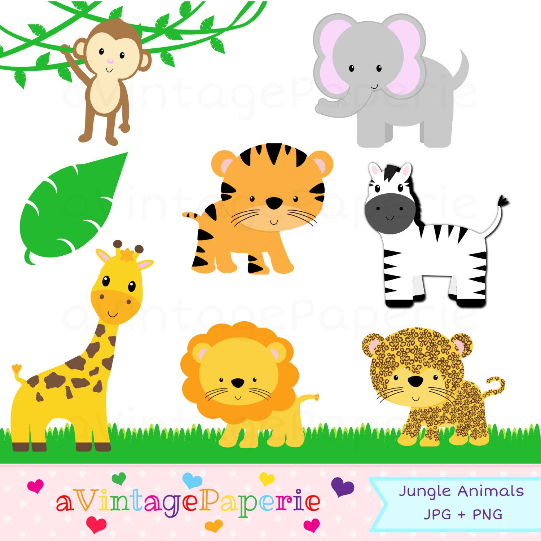 Jungle animal clipart - Jungle Animal Clip Art - Zoo animal clipart - Safari animal clip