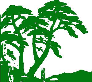 Jungle clipart 7