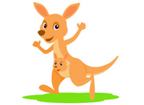 Kangaroo With Joey In Pouch Clipart Size: 57 Kb