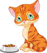 Kitten back · Cute Kitten