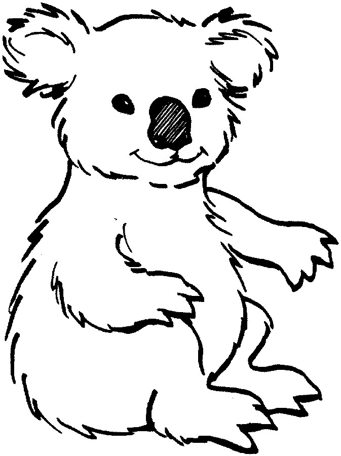 Koala Bear Clipart - .