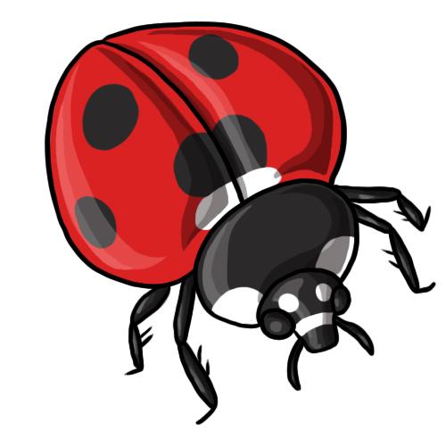 Ladybug Clip Art 5 u0026middot; Ladybug Clip Art 6