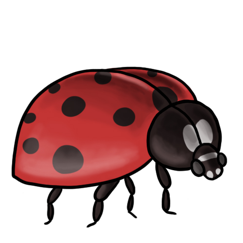 Ladybug Clip Art 7 u0026middot; Ladybug Clip Art 8