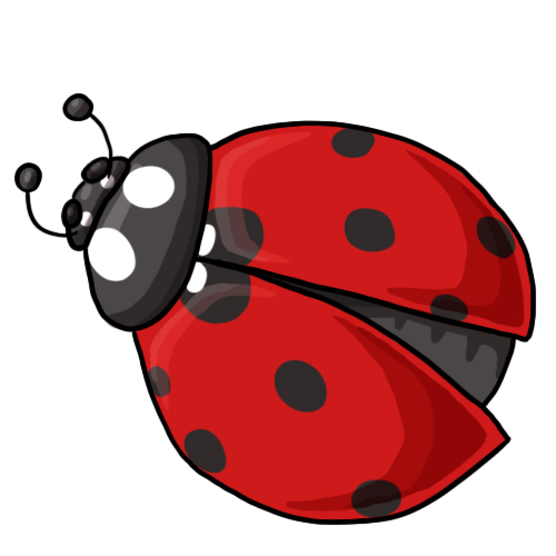 Ladybug Clip Art 9 ...