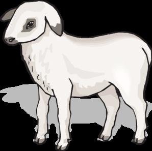 Lamb clipart 3