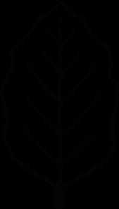 leaf outline clipart